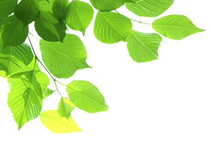 株式会社テクノジェット|ウォータージェット表面処理・剥離、金属溶射・各種塗装各種塗装・防水・ライニング工事